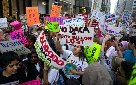 DACA; And the 800,000 people affected