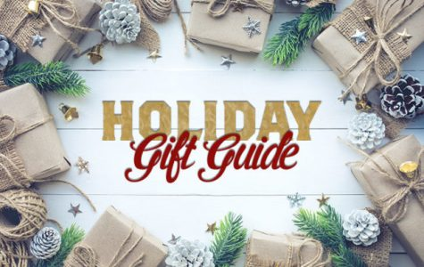 Top 10 Holiday Gifts under $100!