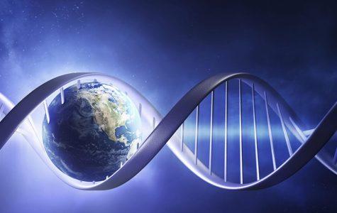 Ancestry DNA Testing