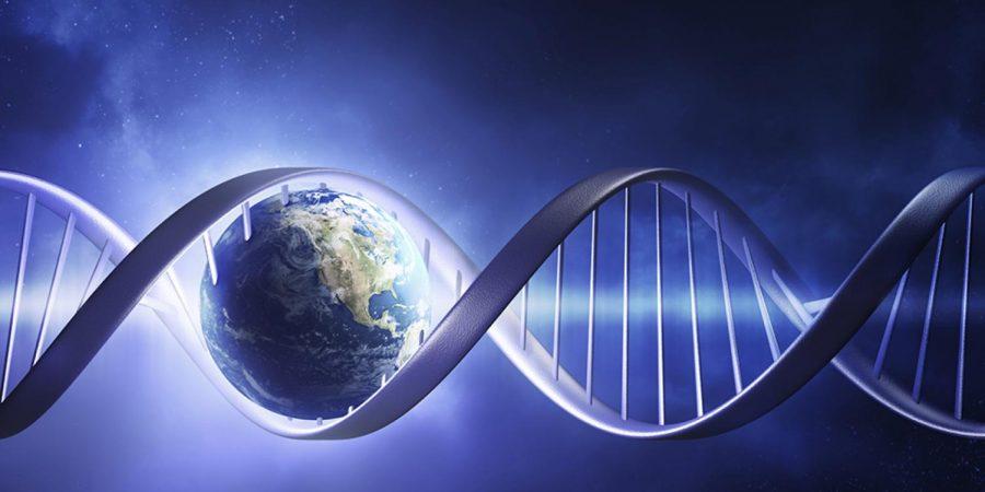Ancestry+DNA+Testing