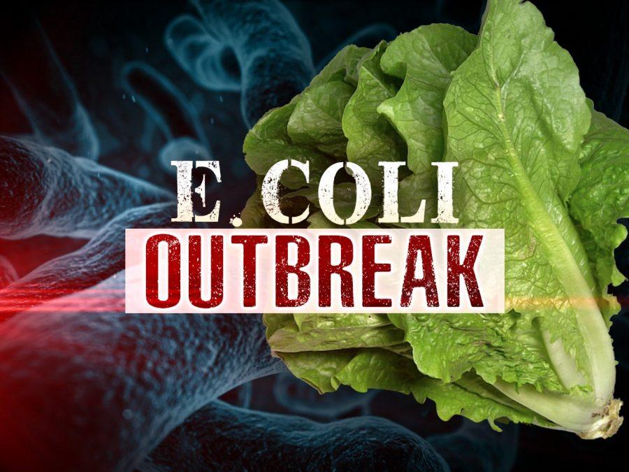 E Coli. Outbreak
