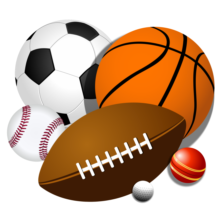 New+Sports+Electives+at+LHS