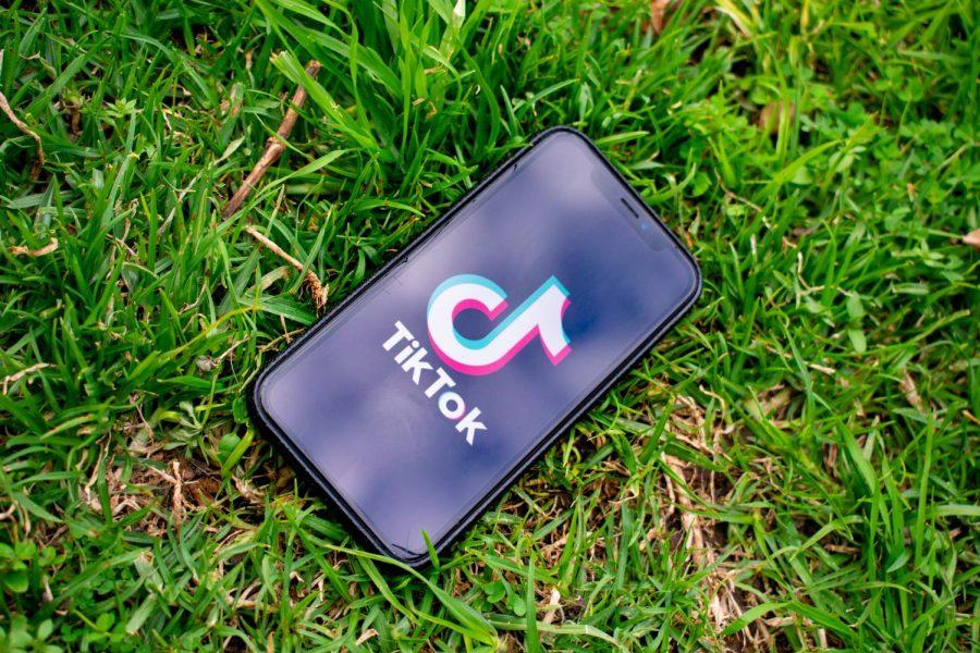 TikTok- The Voice of Youth