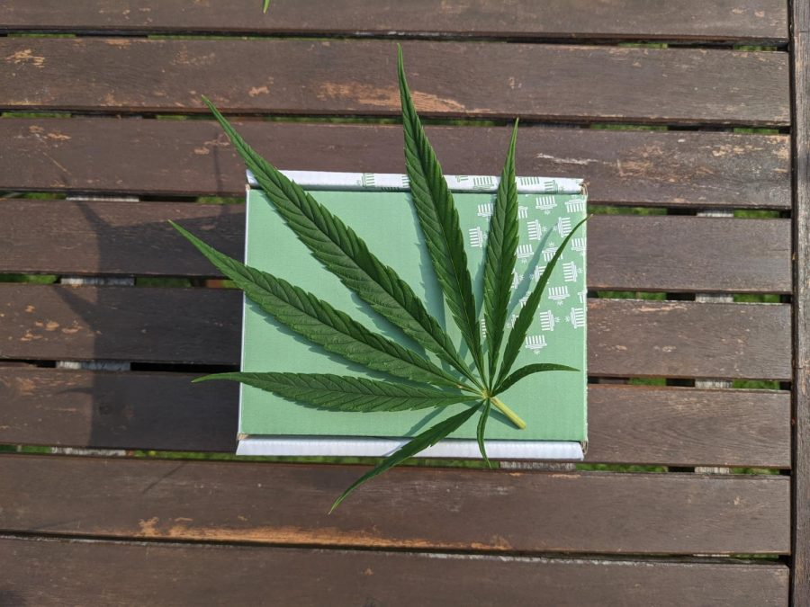 Decriminalization of Drugs in Certain States
