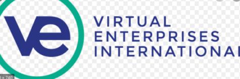 Virtual Enterprise
